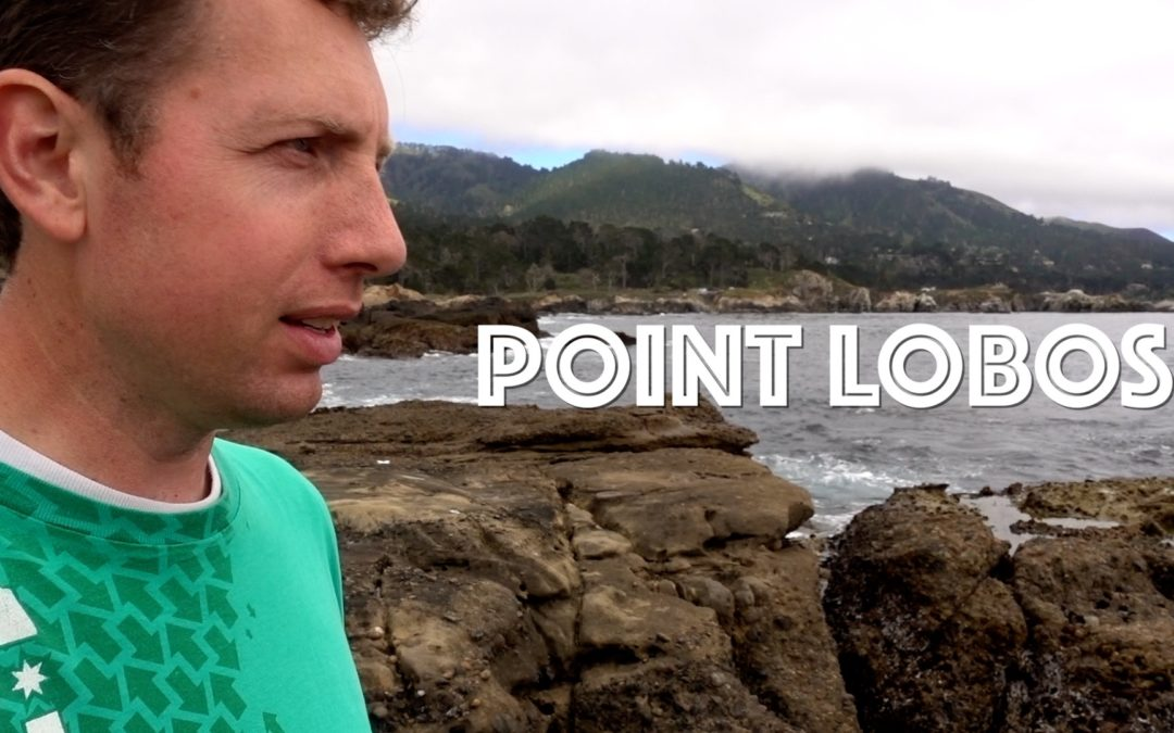 Mindful Journey | Point Lobos