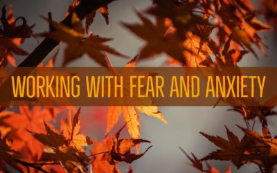 Working with Fear and Anxiety