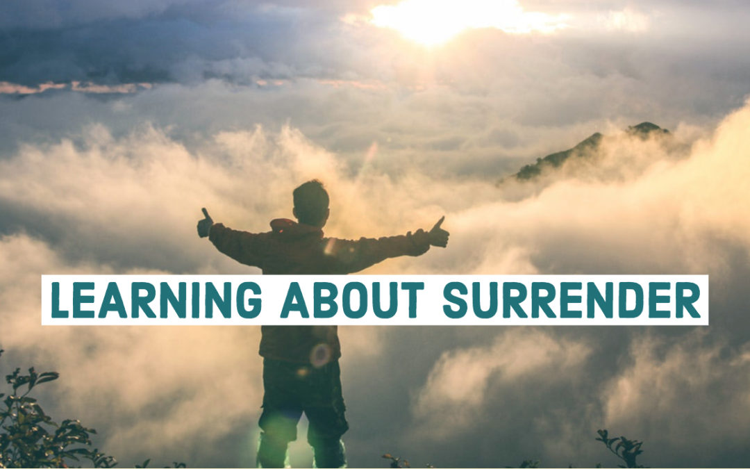 Learning About Surrender